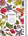 Card design with colored ylang-ylang, impatiens, daffodil, tigridia, lotus, aquilegia 53750259
