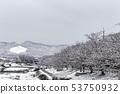 Kamogawa - snow scenery 53750932