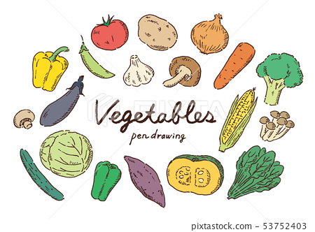 Vegetable pen drawing color 53752403