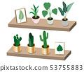 사시 식물 53755883