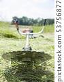 풀 베기, 잡초 이미지 벌초 기계 깎기 불기 예불 53756877