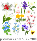 Flower Set 3. Flora Vector Collection. 53757908