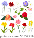 Flower Set 1. Flora Vector Collection. 53757916