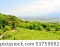 从Usuyama植物园的新鲜的绿色目炫视图 53759092