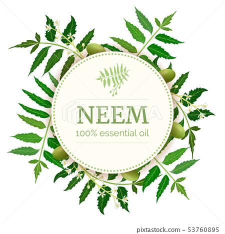 Neem Round Circle badge. leaf branch, flowers and 53760895