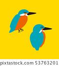 鸟翠鸟 53763201