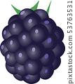 Blackberry 53763531