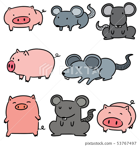 vector set of pig and rat 53767497