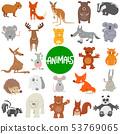 cartoon wild animal characters large set 53769065
