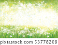 Vector summer, green, nature  background. 53778209
