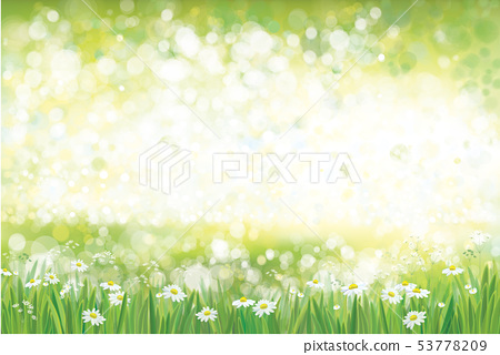 Vector summer, green, nature  background. 53778209