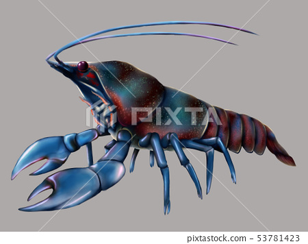 Blue crayfish 53781423
