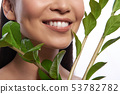 Leaves on the branch near the face of smiling woman 53782782