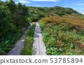 Mountain trail near the peak of Jizoyama in autumn 53785894