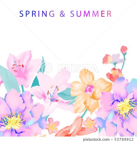 優雅的手繪玉蘭花花卉 53789912