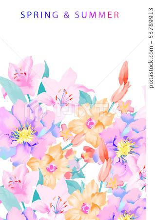 優雅的手繪玉蘭花花卉 53789913