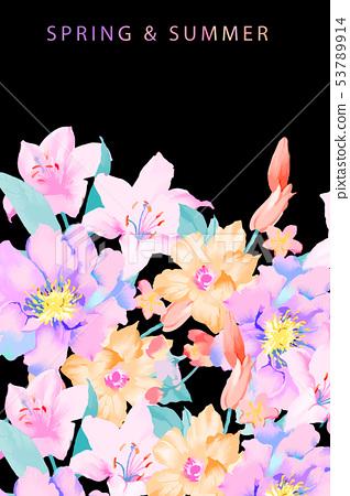 優雅的手繪玉蘭花花卉 53789914