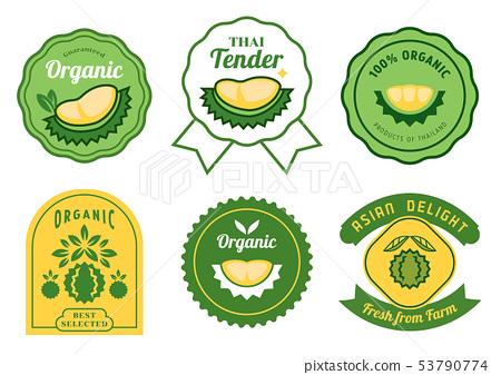 Thai durian stickers design 53790774