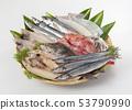 什錦乾魚 53790990