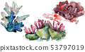 Colorful aquatic underwater nature coral reef. Watercolor background set. Isolated coral 53797019