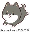 烏木狗小狗奔跑 53800596