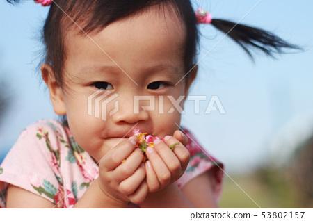一位東方女孩在草原摘花,聞花香的臉部及手部特寫 53802157