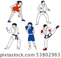 레슬링 · 유도 · 가라테 · 복싱 · 태권도 올림픽 무술 격투기 경기 일러스트 세트 53802963