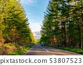 树路雪山乡下自然行 53807523