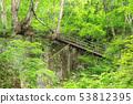 เส้นทางเดินเล่นน้ำตก Utsue สี่สิบแปด 53812395