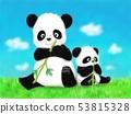 팬더의 부모와 자식 53815328