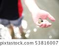 조개 잡이를 즐길 아이 53816007