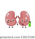Unhealthy sad sick kidneys with bottle 53823586