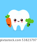 Cute healthy happy tooth character  53823797