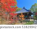 【쿄토】 맑은 날에 닌 나지 경장과 단풍 53829942