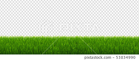 Green Grass And Transparent Background 53834990