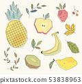 复古水果插图 53838963