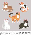五只可爱的猫咪 53838965
