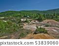[제발 괘 자연 연구로】 아키타 현 가즈시 하치만 타이 쿠마 국유림 33 53839060