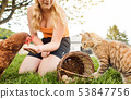 Little girl with chicken and cat on farm 53847756