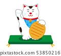 貓招手貓墊 53850216
