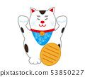 Cat beckoning cat 53850227