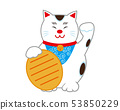 แมวกวักมือเรียกแมว 53850229
