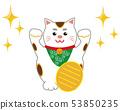 貓招手貓 53850235