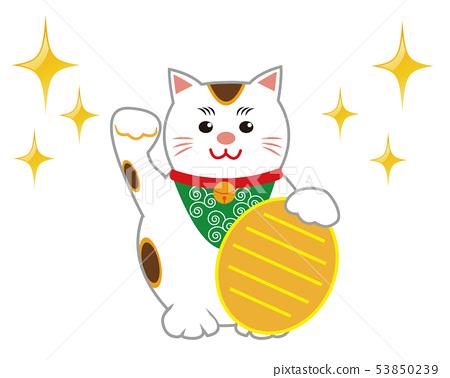 แมวกวักมือเรียกแมว 53850239