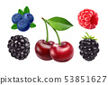 Blackberries cherry, blueberries and raspberries. 3d vector icon set. Realistic illustration 53851627