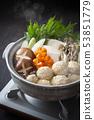Chicken dumpling pot 53851779