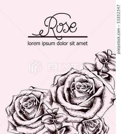 Vintage roses card Vector line art. Boho style 53852347