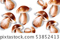 Mushroom Vector watercolor. Menu template round 53852413