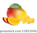 Mango fruit and slices isolated Vector realistic. 53852646