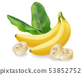 Banana fruit isolated Vector realistic poster 53852752